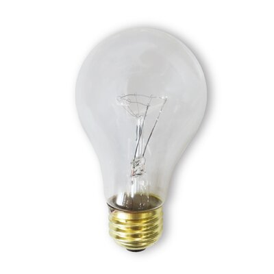 130-Volt Incandescent Light Bulb (Pack of 2) (Set of 28) Wattage: 60
