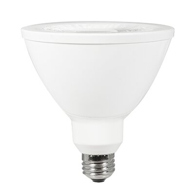 Norm 2.0 13W LED Light Bulb