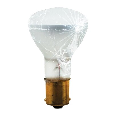 19.5W 130-Volt (2700K) R12 Elevator Light Bulb (Set of 7)