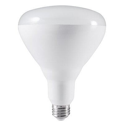 20W E26 Medium Base LED Light Bulb (Set of 2)