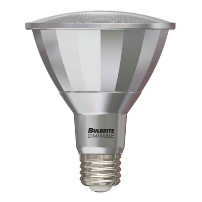 13W E26 Medium Base LED Light Bulb (Set of 2)