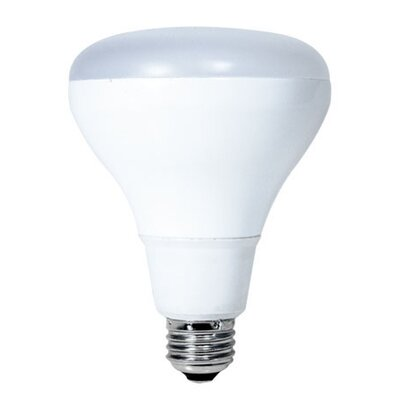 12.5W E26 Medium Base LED Light Bulb (Set of 2)