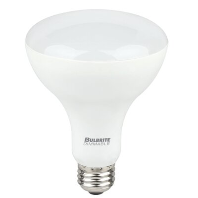 9W E26 Medium Base LED Light Bulb (Set of 2)