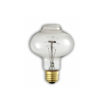 40W E26 Medium Base Incandescent Light Bulb (Set of 4)