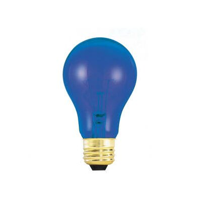 25W Blue 120-Volt Incandescent Light Bulb (Set of 19)