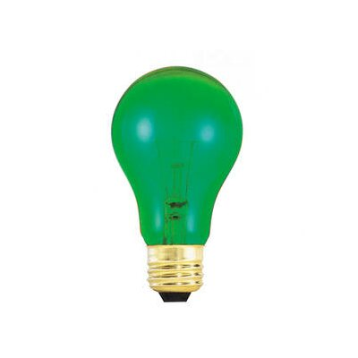 25W Green 120-Volt Incandescent Light Bulb (Set of 19)