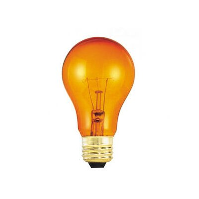 25W Orange 120-Volt Incandescent Light Bulb