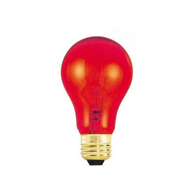 25W Red 120-Volt Incandescent Light Bulb (Set of 19)