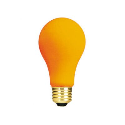Orange 120-Volt Incandescent Light Bulb (Set of 19) Wattage: 25W