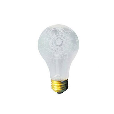 60W 130-Volt Incandescent Light Bulb (Set of 19)