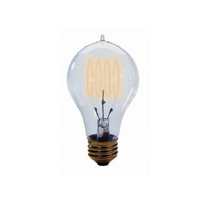 Nostalgic Edison 25W 120-Volt Incandescent Light Bulb (Set of 4)