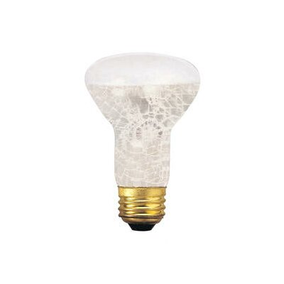50W 130-Volt Incandescent Light Bulb (Set of 6)