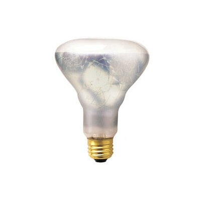 65W 130-Volt Incandescent Light  Bulb (Set of 5)