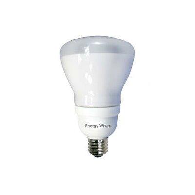 Frosted E26/Medium Compact Fluorescent Light Bulb (Set of 2) Wattage: 15W