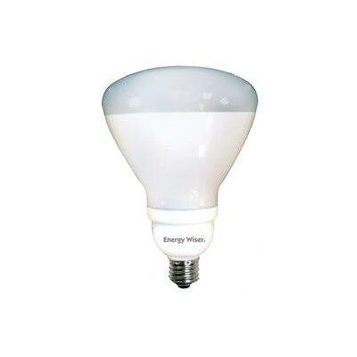 Frosted E26/Medium Compact Fluorescent Light Bulb (Set of 2) Wattage: 23W