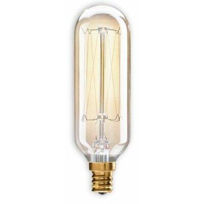 40W Candelabra E12 Incandescent Light Bulb