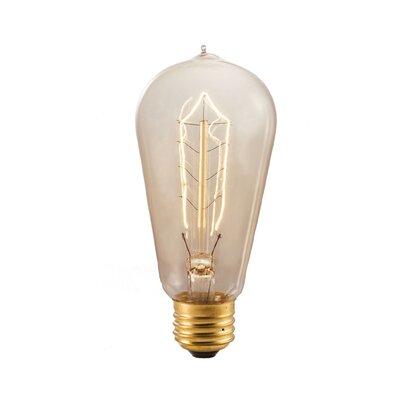 40W Richmond Amber E26/Medium Incandescent Vintage Filament Light Bulb (Set of 10)