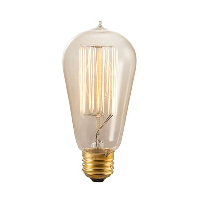 Richmond Amber E26/Medium Incandescent Vintage Filament Light Bulb Wattage: 40W