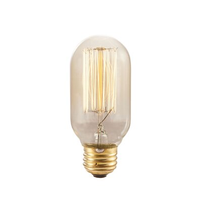 40W Manhattan Amber Incandescent Vintage Filament Light Bulb (Set of 8)