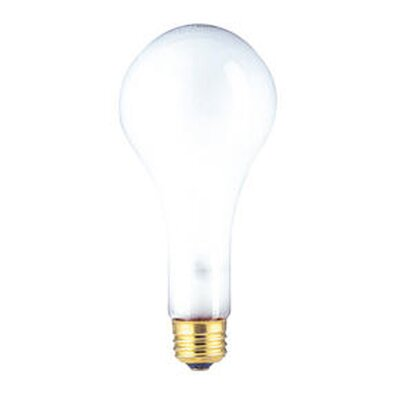 300W Frosted 130-Volt (2800K) Incandescent Light Bulb (Set of 9)