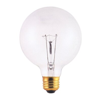 130-Volt Incandescent Light Bulb (Set of 24) Wattage: 40W