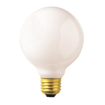 40W Frosted 130-Volt (2540K) Incandescent Light Bulb