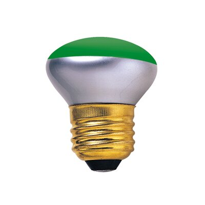 40W Green 120-Volt Incandescent Light Bulb