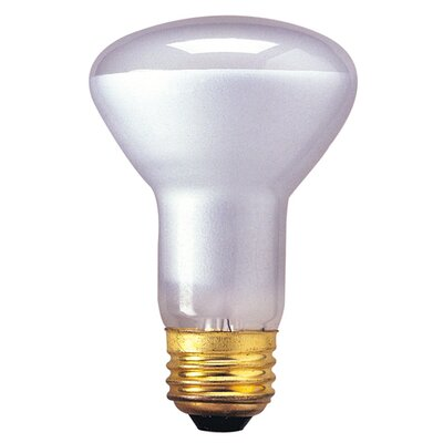 45W 130-Volt (2700K) Incandescent Light Bulb (Set of 15)