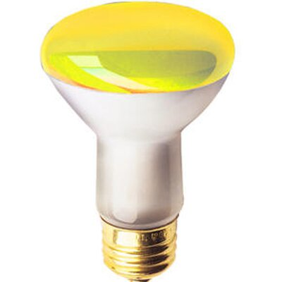 50W Colored Halogen Light Bulb Color: Amber