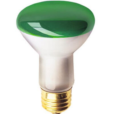 50W Colored Halogen Light Bulb (Set of 10) Color: Green