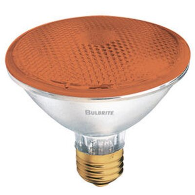 75W Amber 120-Volt Halogen Light Bulb (Set of 4)