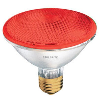 75W Red 120-Volt Halogen Light Bulb (Set of 4)