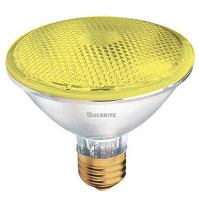 75W Yellow 120-Volt Halogen Light Bulb (Set of 4)