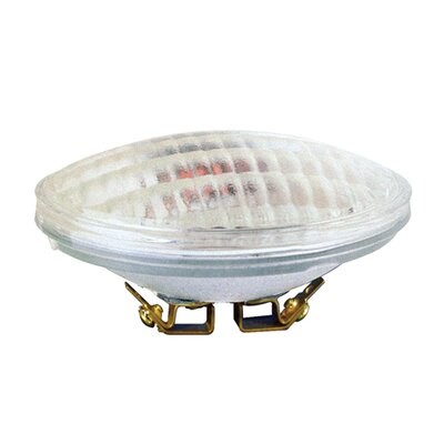 36W 12-Volt (2700K) Halogen Light Bulb (Set of 4)