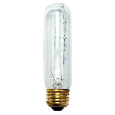 25W 130-Volt (2420K) Incandescent Light Bulb (Set of 18)