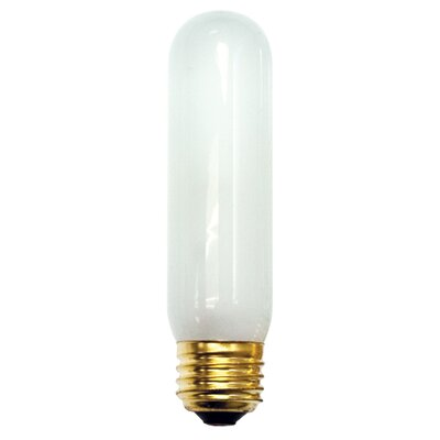 60W Frosted (2620K) Incandescent Light Bulb (Set of 18)