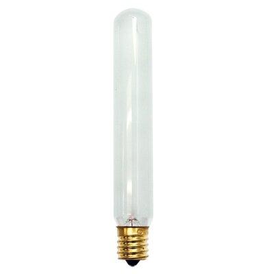 Intermediate 25W Frosted 130-Volt (2400K) Incandescent Light Bulb (Set of 19)