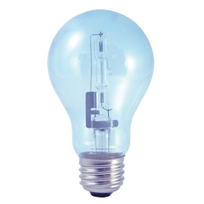 60W (2900K) Halogen Light Bulb (Pack of 2) (Set of 4)