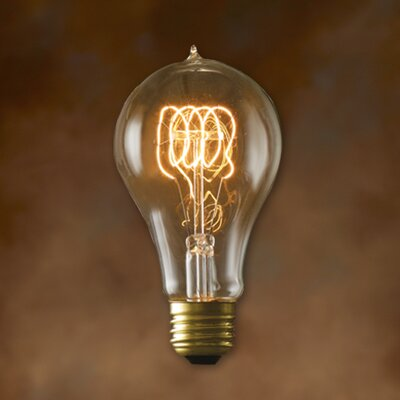 Nostalgic Edison Warm Glow Incandescent Light Bulb (Pack of 6) Wattage: 40W
