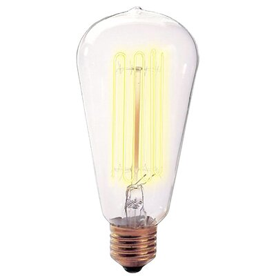 Nostalgic Edison 40W 120-Volt Incandescent Light Bulb II (Set of 4)