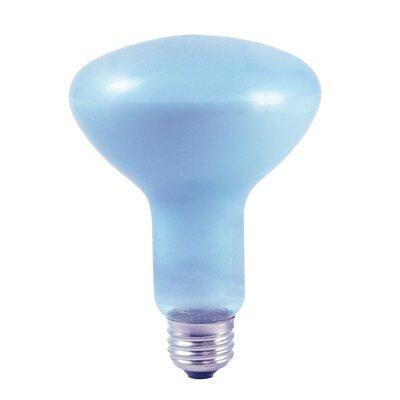 65W Full Spectrum R30 Reflector Flood Light Bulb (Set of 4)