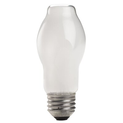 Halogen Light Bulb (Set of 11) Wattage: 53 Watt