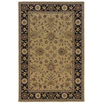 Silk Pearl Sand/Black Area Rug Rug Size: 39 x 59