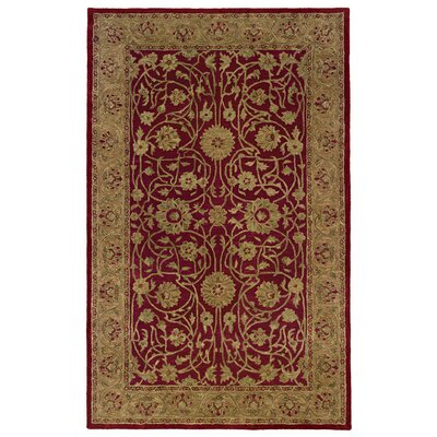 Meadow Breeze Red Rug Rug Size: Rectangle 4 x 6