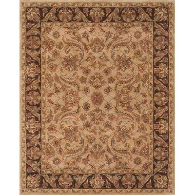 Pardis Beige/Brown Rug Rug Size: 4 x 6