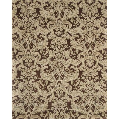 Pardis Brown/Lime Rug Rug Size: 2 x 3