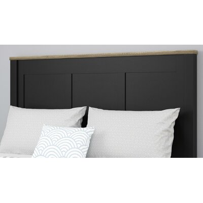 Callowhill Queen Panel Headboard Color: Black