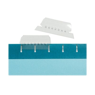Hanging File Tabs,with Strip Inserts, 1/5 Cut, 10 per Box, Clear (Set of 4)