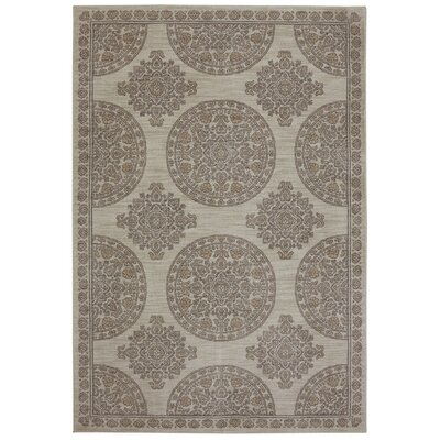 Pacifica Olympia Machine Woven Polyester Beige Area Rug Rug Size: Rectangular 34 x 55