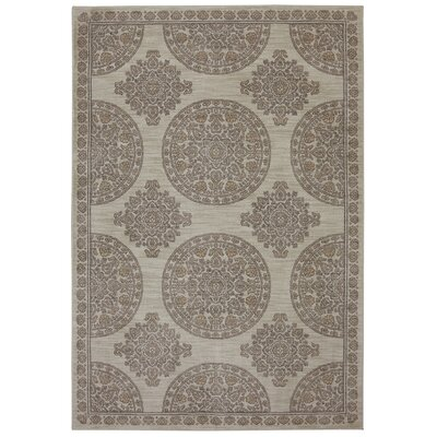 Pacifica Olympia Machine Woven Polyester Beige Area Rug Rug Size: Rectangular 5'3